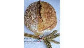 kenyér aug20-294x170xffffff